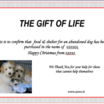 Gift of Life PAWS